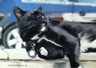 Renta Cat