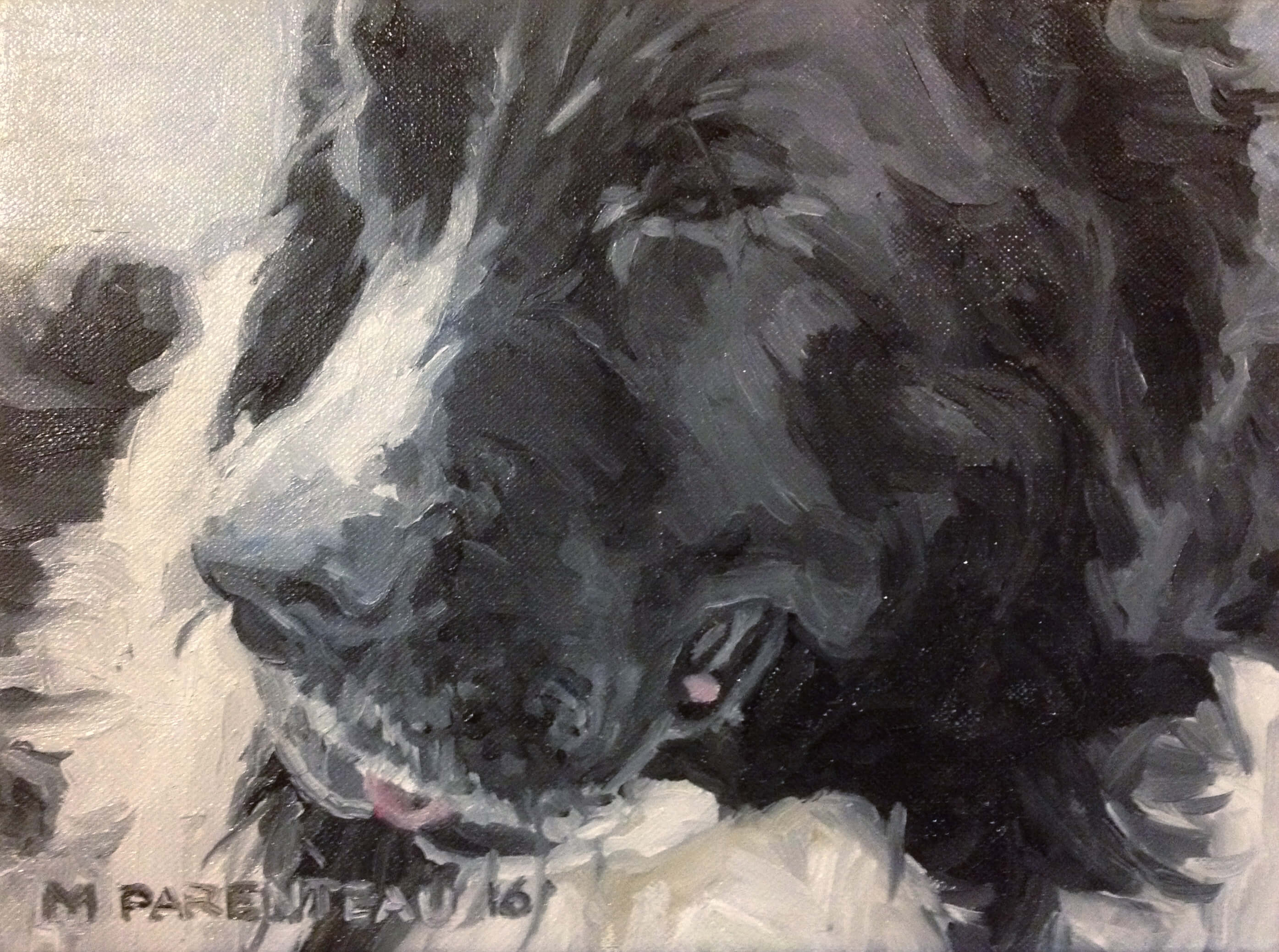 Newfoundlander Dog (Oil on Canvas)